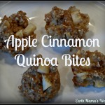 Apple Cinnamon Quinoa Bites