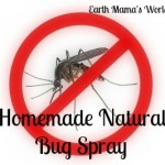 Homemade Natural Bug Spray