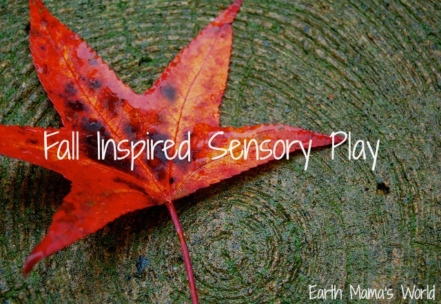Fall Inspired Sensory Play