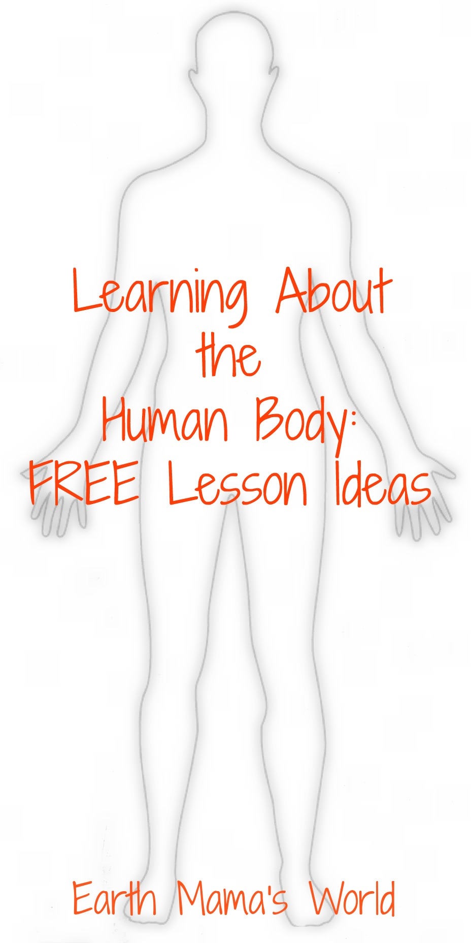 Homeschool:  Free Human Body Lesson Ideas