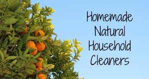 Homemade Natural Household Cleaners