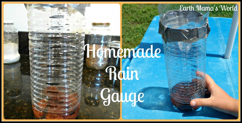 how to build a rain gauge for kids