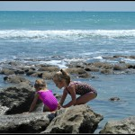 Field Trip Friday: Jensen Beach, FL