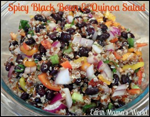 spicy black bean and quiona salad